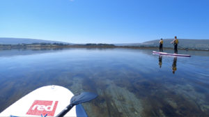 Adults on a SUP lesson at Bay SUP Stand Up Paddleboarding